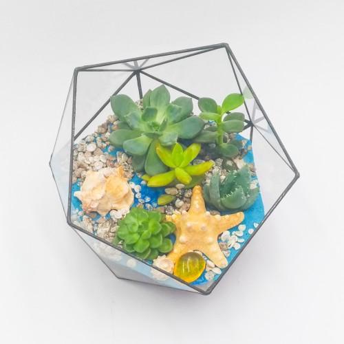 Флорариум подводный мир