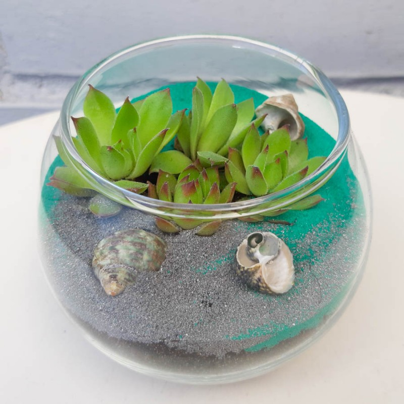 Флорариум mini