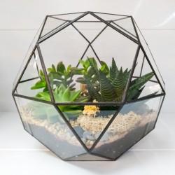 "Флорариум ""Тропический рай"", Икосододекаэдр 21*26см"