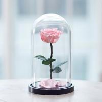 Роза в колбе, Розовая King Size