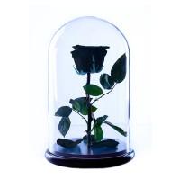 Неувядающая черная роза в колбе