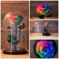 Неувядающая радужная роза в стекле
