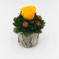 Мини: Букетик с желтой розой