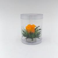 One: Оранжевая роза