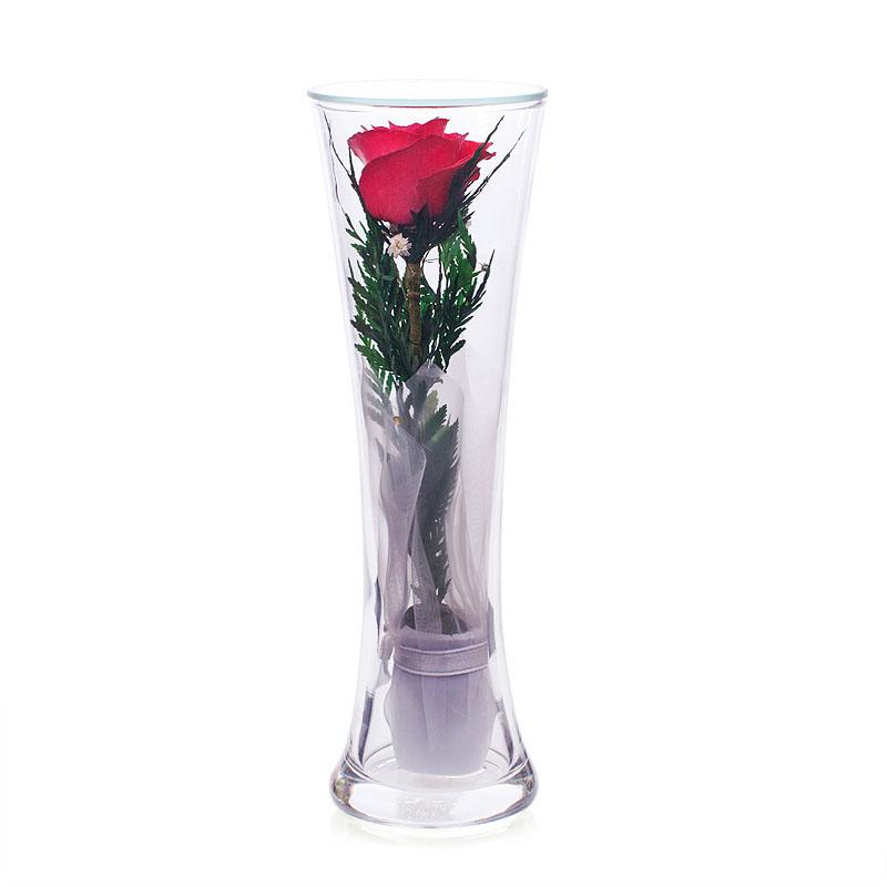 Роза в колбе в вакууме
