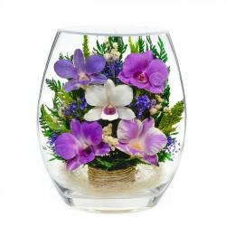 Цветы в вакууме NFEHO-03