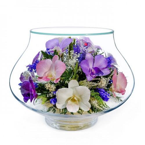 Цветы в вакууме NFLLO