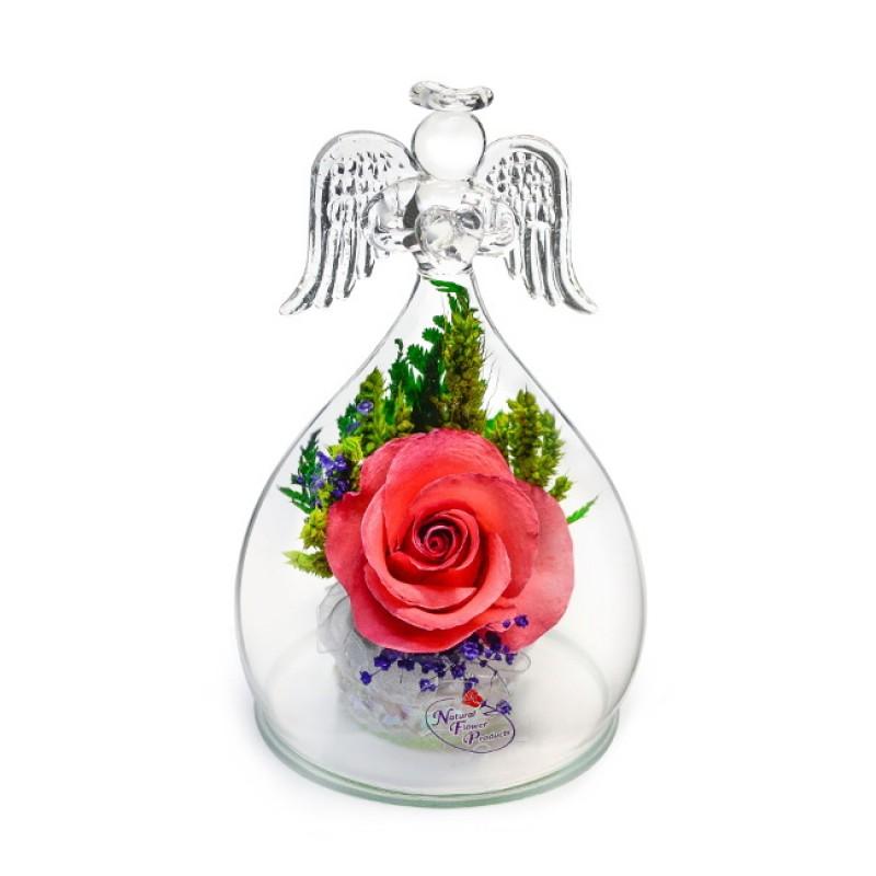 Неувядающие цветы в вакууме в форме ангела